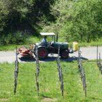 La smart agriculture ou l'art de se simplifier la vie
